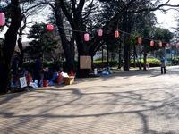20140329_船橋市薬円台4_薬円台公園_桜_1531_DSC01488