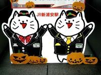 20151031_新浦安駅_マスコットキャラクタ_しうねっこ_1557_DSC05600
