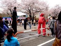 20150404_松戸市六高台の桜通り_六実桜まつり_1201_DSC08365