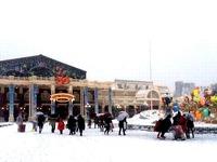 20140208_浦安市舞浜_東京ディズニーリゾート_大雪_208
