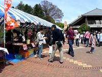 20160409_あけぼの山農業公園_福島県只見町特産品_1210_DSC00666