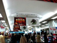 20141224_JRA_中山競馬場_有馬記念_重賞競走_1635_DSC03362