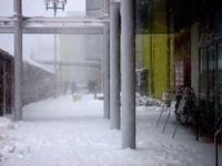 20140208_関東に大雪_千葉県船橋市南船橋地区_1544_DSC04415
