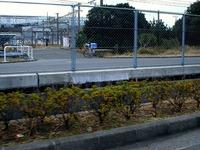 20131208_JR東日本_京葉車両センター_太陽電池_1240_DSC02232