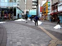 20140219_関東に大雪_南岸低気圧_雪雲_積雪_0941_DSC05896