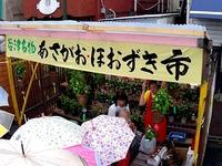 20150704_習志野市谷津5_第29回納涼風物祭_1558_DSC00595T