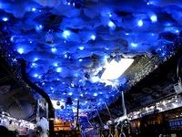20160123_横浜市営バス_クリスマス仕様が尋常じゃない_282