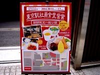 20141012_東京都_JR東京駅_東京鉄道祭_1358_DSC02407