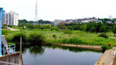 20050612_長津川調整池_1047_DSC00693W