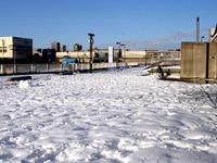 20140209_関東に大雪_千葉県船橋市南船橋地区_1548_DSC04606