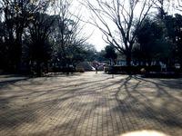20140329_船橋市薬円台4_薬円台公園_桜_1528_DSC01451