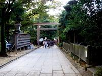 20151018_船橋大神宮_奉納子ども相撲_0942_DSC03439