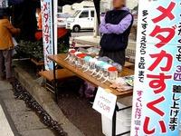 20150404_松戸市六高台の桜通り_六実桜まつり_1201_DSC08361