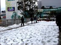 20140215_関東に大雪_津田沼_積雪_記録的大雪_1411_DSC05300