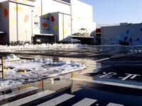 20140209_関東に大雪_千葉県船橋市南船橋地区_1546_DSC04590