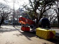 20140329_船橋市薬円台4_薬円台公園_桜_1531_DSC01490