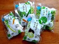 20140817_スーパー_カット野菜_410