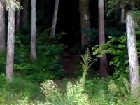 20140201_宮城県石巻市釜谷_石巻市立大川小学校_190