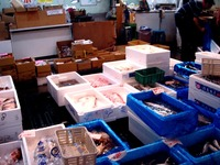 20150801_船橋市地方卸売市場_ふなばし楽市_0916_DSC02267