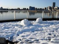 20140209_関東に大雪_千葉県船橋市南船橋地区_1549_DSC04614