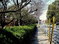 20140323_船橋市金杉6_御滝公園_御滝不動尊_桜_1257_DSC00464