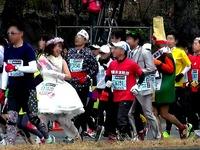 20140223_東京都千代田区有楽町_東京マラソン_1032_46040