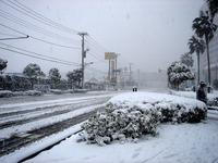 20140208_関東に大雪_千葉県船橋市南船橋地区_1511_DSC04369