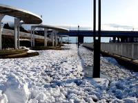 20140209_関東に大雪_千葉県船橋市南船橋地区_1549_DSC04612