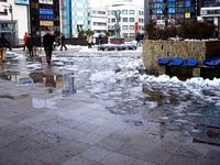20140215_関東に大雪_津田沼_積雪_記録的大雪_1606_DSC05404