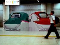 20150902_JR東日本_東京駅_新幹線_巨大顔出し看板_0720_DSC06035