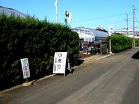 20141213_船橋市東船橋1_金子農園シクラメン小売_1051_DSC01663