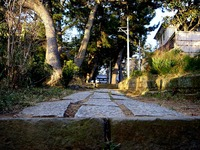 20140103_船橋市東船橋7_茂呂浅間神社_初詣_1547_DSC09007