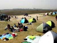 20150418_ふなばし三番瀬海浜公園_潮干狩り_1049_DSC09969