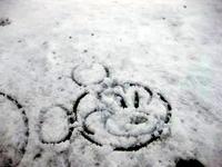 20140208_浦安市舞浜_東京ディズニーリゾート_大雪_290