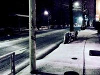 20160119_東京都_強い冬型の低気圧_積雪_大雪_0806_DSC00052T