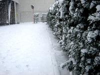 20140208_関東に大雪_千葉県船橋市南船橋地区_1457_DSC04348