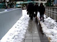 20140215_関東に大雪_津田沼_積雪_記録的大雪_1411_DSC05299