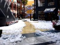 20140215_千葉県船橋市南船橋地区_関東に大雪_1220_DSC05202