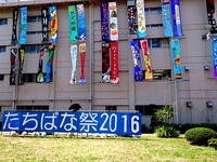 20160618_0928_千葉県立船橋高校_第67回たちばな祭_DSC00253
