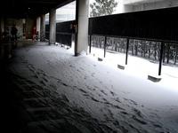 20140208_関東に大雪_千葉県船橋市南船橋地区_1500_DSC04351