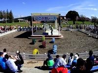 20151003_千葉県富津市田倉_マザー牧場_子ブタのレース_1053_DSC01222