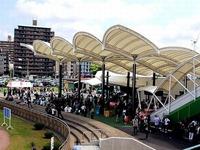 20140519_船橋競馬場_千葉サラブレッドセール_040