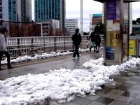 20140215_関東に大雪_津田沼_積雪_記録的大雪_1411_DSC05292