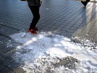 20160120_東京都_強い冬型の低気圧_積雪_大雪_0748_DSC03472