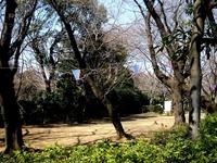 20140323_船橋市金杉6_御滝公園_御滝不動尊_桜_1256_DSC00460