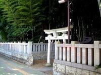 20170305_市川市八幡2_不知森神社_DSCF0014T