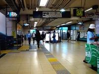 20140917_東京都葛飾区_JR総武線_新小岩井駅_1140_DSC07080