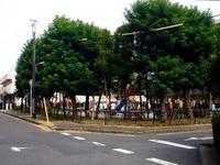 20150801_船橋ファミリータウン夏祭り_船橋浜北公園_0859_DSC02253