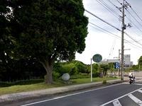 20150419_松戸市千駄堀_二十世紀梨発祥の地_120