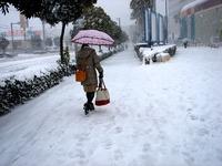 20140208_関東に大雪_千葉県船橋市南船橋地区_1512_DSC04371